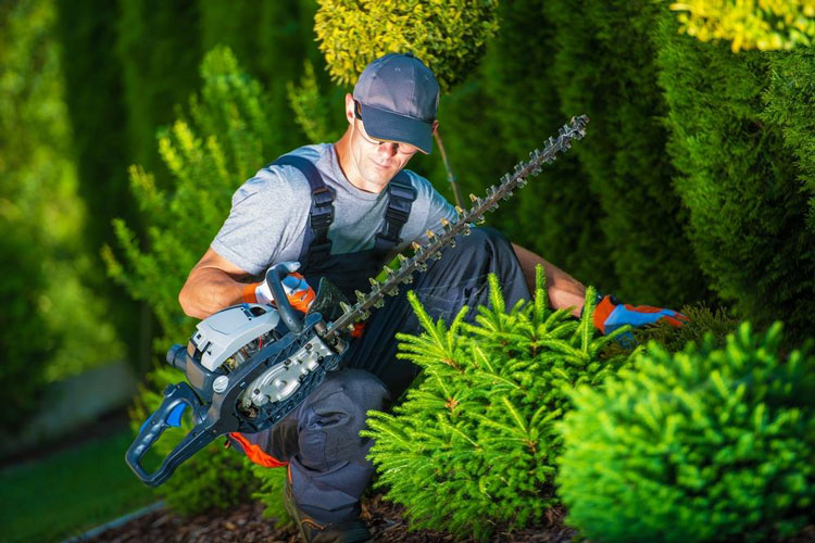 Best Boots For Landscaping 2017